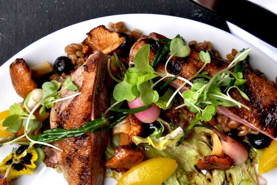 discover central new jersey plate of delicious food for farm-to-table