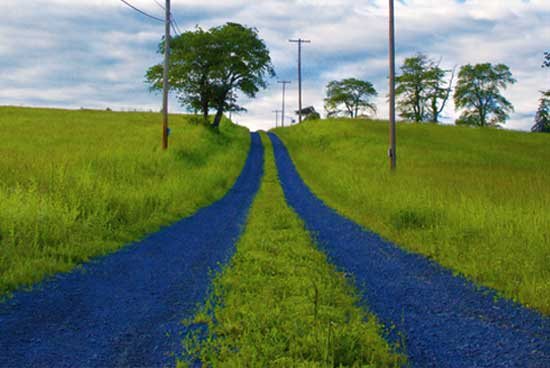 discover central new jersey image of two blue path trails going uphill on hunter road lambertville