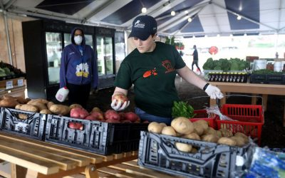 Central Jersey Farms Ready to Nourish Us this COVID Summer