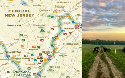 No Joke: N.J. Is Still the Garden State–Come See!